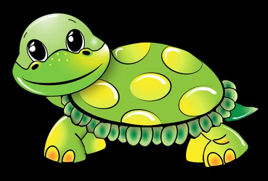 turtle-1021521_640