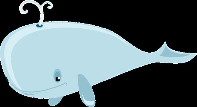 ballena aventuras